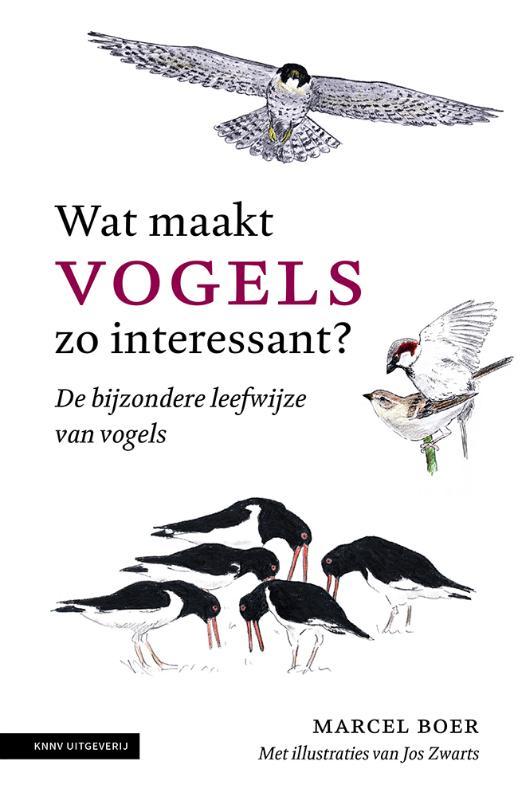 omslag Wat maakt vogels zo interessant Boer